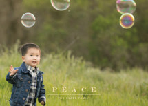 Classic & Serene Holiday Photo Cards By Jennifer Lew