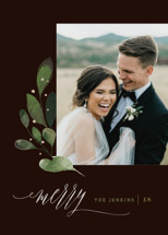 Botanical Spray Holiday Photo Cards By Lori Wemple