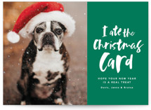 This is a green holiday photo card by Lea Delaveris called I ate the nice list with standard printing on smooth signature in standard.
