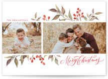 This is a green holiday photo card by Wildfield Paper Co. called Olive + Berries with standard printing on smooth signature in standard.
