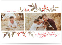 Olive + Berries Holiday Photo Cards By Wildfield Paper Co.