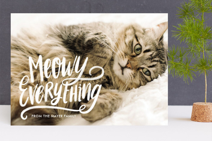"""Meowy Everything"" - Funny Holiday Photo Cards in First Snow by Loree Mayer."