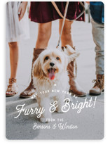 This is a white holiday photo card by Eric Clegg called Furry Christmas with standard printing on smooth signature in standard.