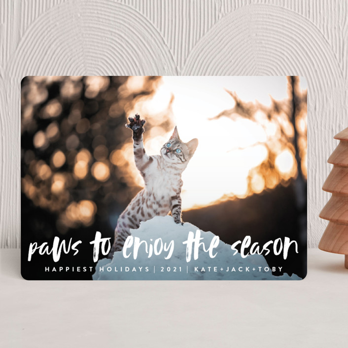 Pause Holiday Cards
