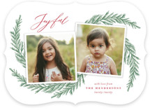 This is a red holiday photo card by Katherine Moynagh called Festive Pine Boughs with standard printing on smooth signature in standard.