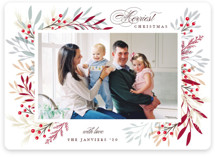 This is a red holiday photo card by Melanie Kosuge called HINTERLAND with standard printing on smooth signature in standard.