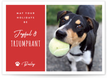 This is a red holiday photo card by Kampai Designs called Triumphant with standard printing on signature in standard.