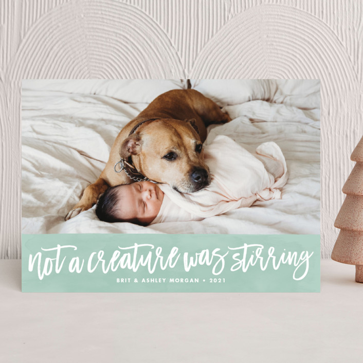 """""""Not a Creature was Stirring..."""" - Holiday Photo Cards in Icicle by Paper and Parcel."""