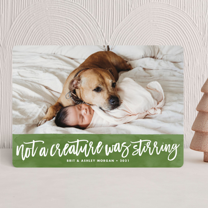 Not a Creature was Stirring Holiday Cards