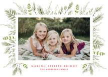 Bed of Greens Holiday Photo Cards By Susan Moyal