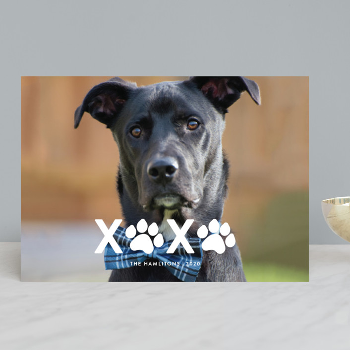 """XOXO"" - Holiday Photo Cards in Milk by Roxy Cervantes."