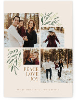 This is a beige holiday photo card by Robert and Stella called Holiday Boughs with standard printing on smooth signature in standard.