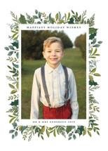 Holly & Greens Holiday Photo Cards By Susan Moyal
