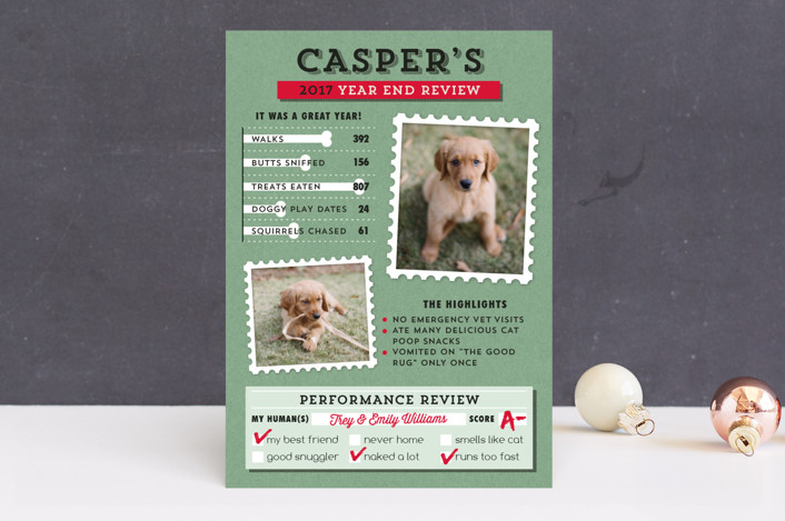 """Dog's Year in Review"" - Funny Holiday Photo Cards in Spearmint by 2birdstone."