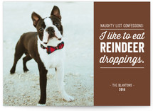 Reindeer Droppings by Mandy Rider