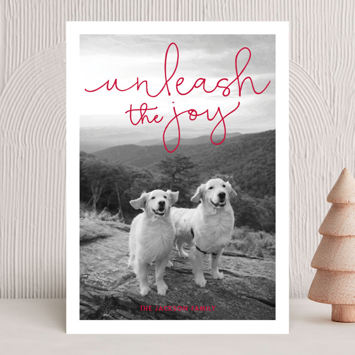 """""""Unleash the Joy"""" - Funny Holiday Photo Cards in Plum by Sandra Picco Design."""