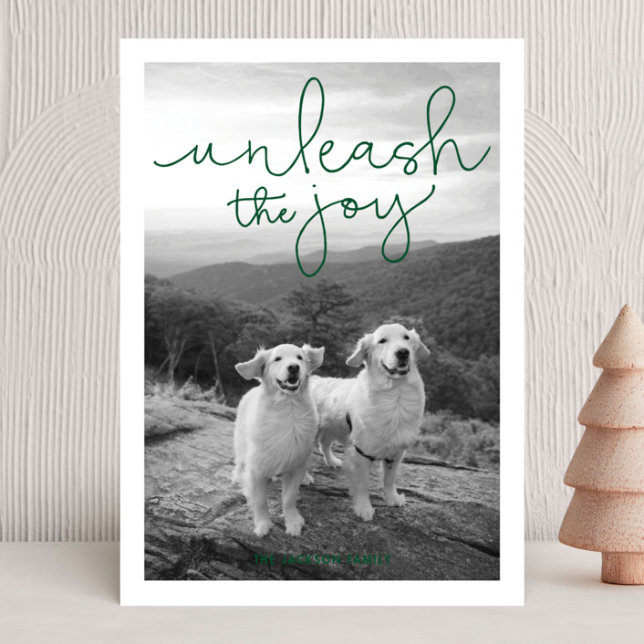 """""""Unleash the Joy"""" - Funny Holiday Photo Cards in Rudolph's Nose by Sandra Picco Design."""