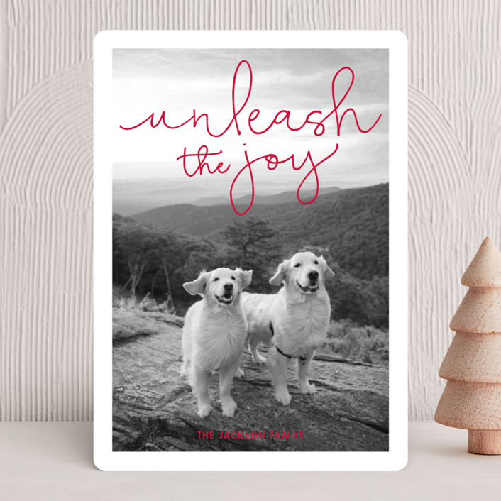 """Unleash the Joy"" - Funny Holiday Photo Cards in Rudolph's Nose by Sandra Picco Design."