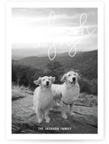 This is a white holiday photo card by Sandra Picco Design called Unleash the Joy with standard printing on smooth signature in standard.