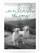 This is a green holiday photo card by Sandra Picco Design called Unleash the Joy with standard printing on smooth signature in standard.