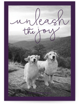 This is a purple holiday photo card by Sandra Picco Design called Unleash the Joy with standard printing on smooth signature in standard.