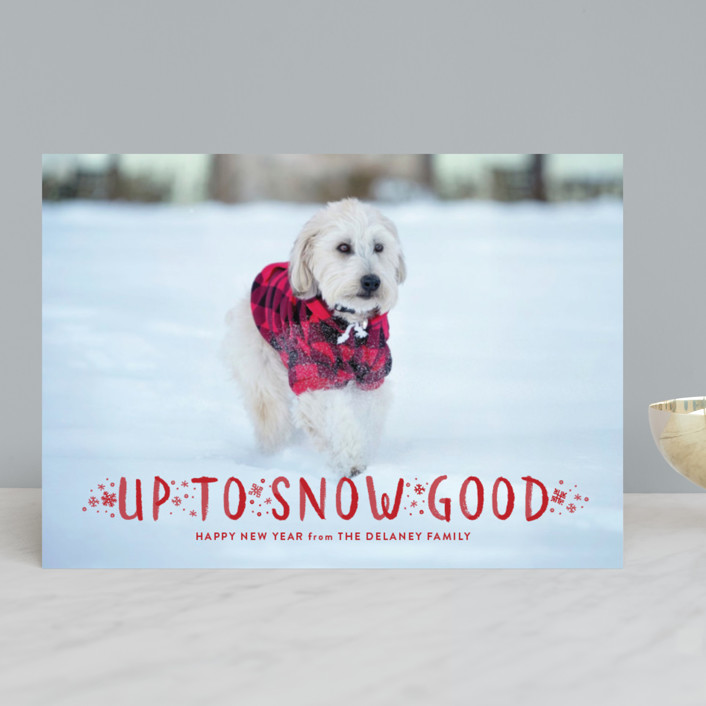 """""""Snow Good"""" - Funny Holiday Photo Cards in Snow by Sarah Brown."""