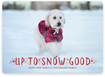 This is a red holiday photo card by Sarah Brown called Snow Good with standard printing on smooth signature in standard.