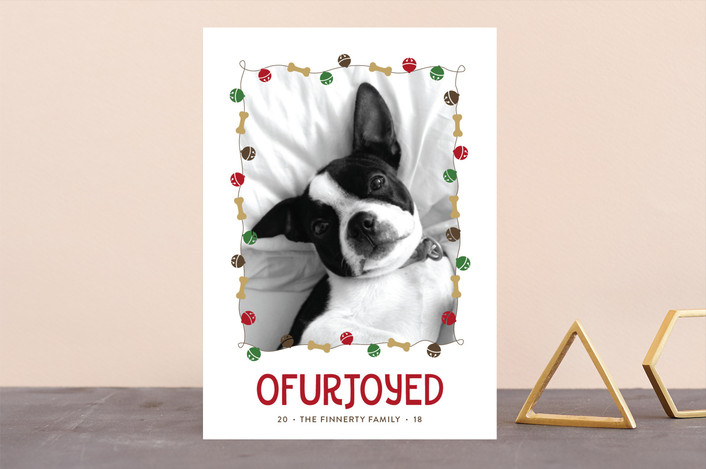 """Jingle Bones"" - Funny Holiday Photo Cards in Walnut by Melissa Casey."