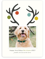 This is a green holiday photo card by Lisa Cersovsky called Happy Howlidays with standard printing on smooth signature in standard.