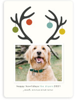 This is a blue holiday photo card by Lisa Cersovsky called Happy Howlidays with standard printing on smooth signature in standard.