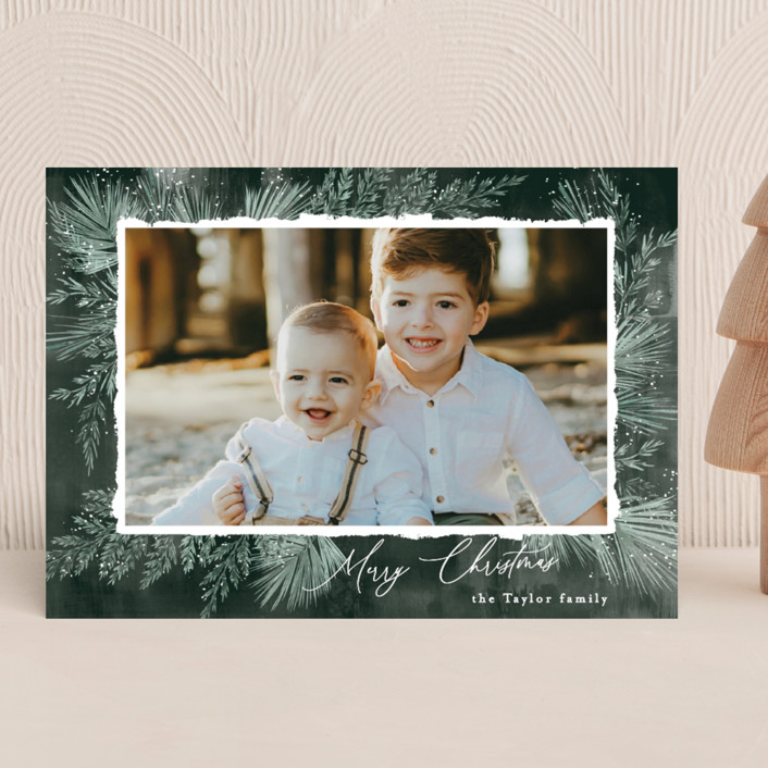 """""""Textured Pines"""" - Holiday Photo Cards in Pine by Alethea and Ruth."""