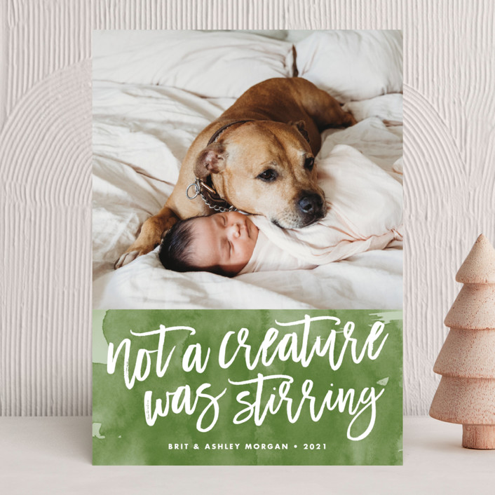 """""""Not a Creature was Stirring..."""" - Funny Holiday Photo Cards in Icicle by Brooke Chandler."""