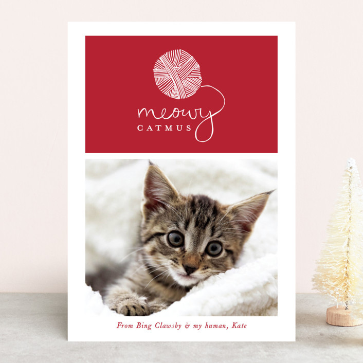 """""""Meowy Catmus"""" - Bohemian Holiday Photo Cards in Ruby by Hudson Meet Rose."""