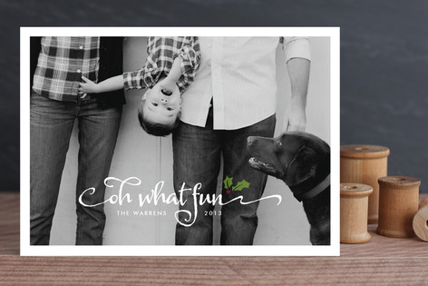 Merry Holly Holiday Photo Cards