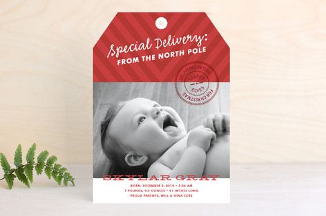 In Time for Christmas Holiday Photo Cards