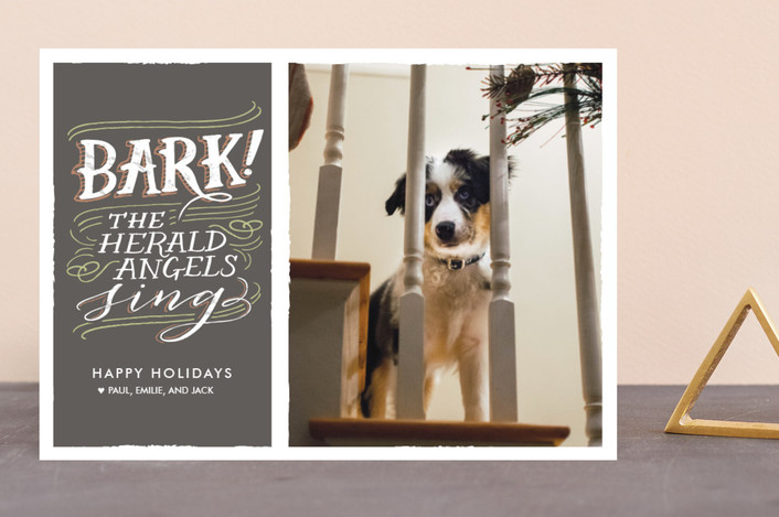 """Bark!"" - Bold typographic Holiday Photo Cards in Charcoal by Laura Condouris."