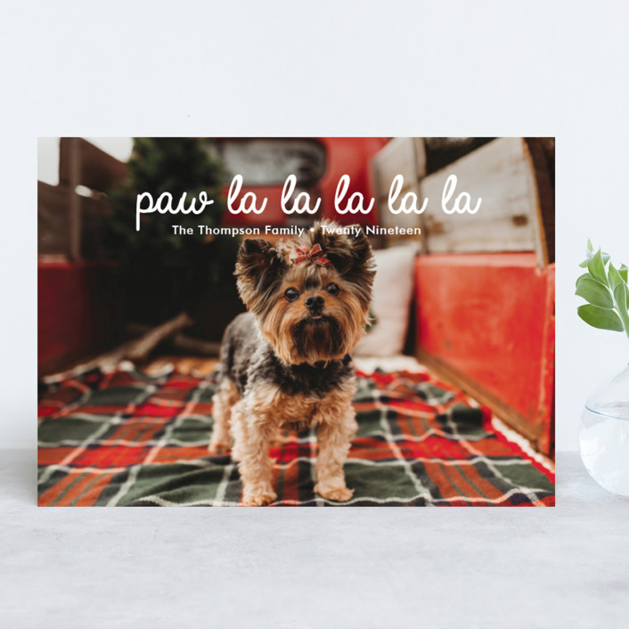 paw-la-la holiday cards