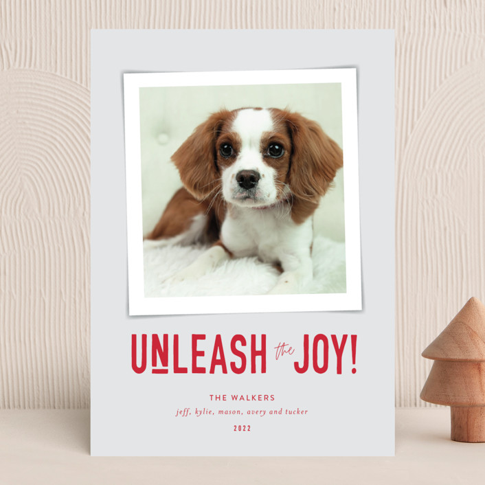 """""""Unleash the Joy"""" - Funny Holiday Photo Cards in Cardinal by Robin Ott."""