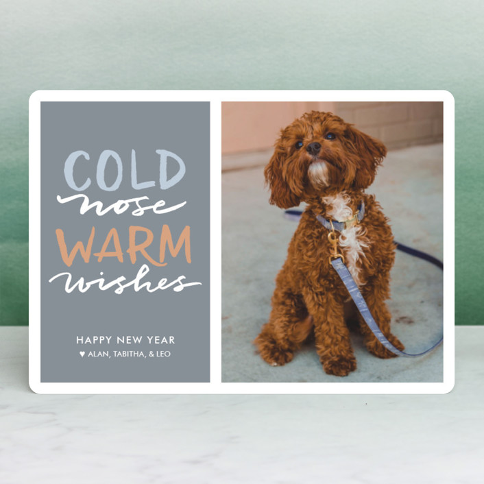 """""""Cold Nose, Warm Wishes"""" - Funny Holiday Photo Cards in Slate Blue by Laura Condouris."""