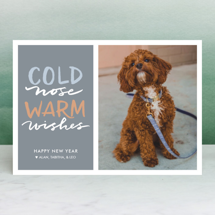 """Cold Nose, Warm Wishes"" - Funny Holiday Photo Cards in Slate Blue by Laura Condouris."
