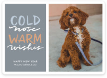 This is a blue holiday photo card by Laura Condouris called Cold Nose, Warm Wishes with standard printing on smooth signature in standard.