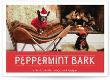Peppermint Bark