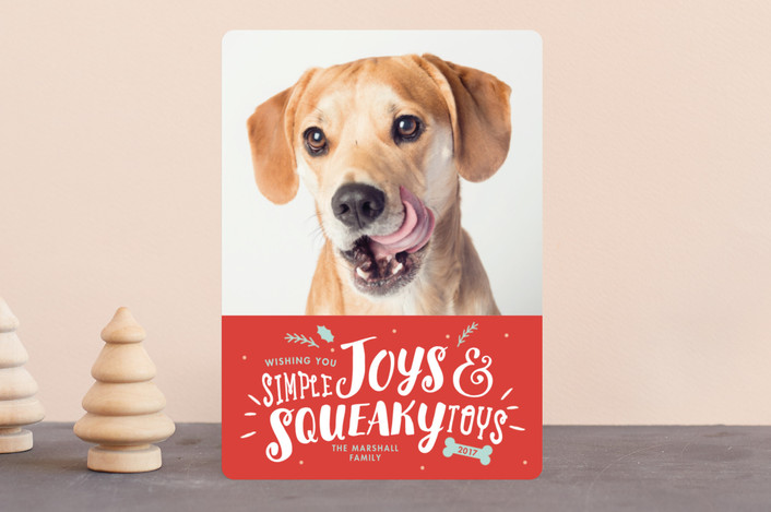 """Simple Joys, Squeaky Toys"" - Funny Holiday Photo Cards in Vermilion by Sandra Picco Design."