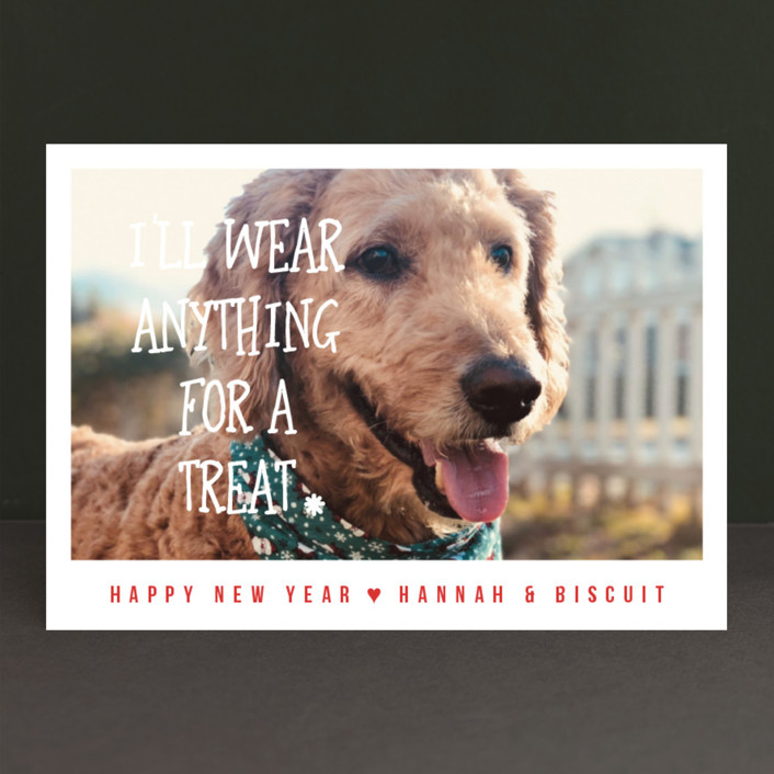 """Treats"" - Funny Holiday Photo Cards in Rouge by Kampai Designs."