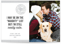 This is a grey holiday photo card by Paper Dahlia called Still Cute with standard printing on smooth signature in standard.