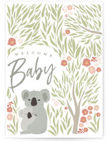 This is a green new baby greeting card by Kelly Lani called koala welcome baby with standard printing on signature in greeting cards.
