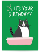 This is a green birthday card by Genna Blackburn called Cat Box with standard printing on signature in greeting cards.