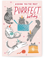 This is a pink birthday cards for her by Everett Paper Goods called Kitten Caboodle with standard printing on signature in greeting cards.