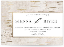This is a beige foil stamped wedding invitation by Zhay Smith called Gilded Birch with foil-pressed printing on signature in standard.