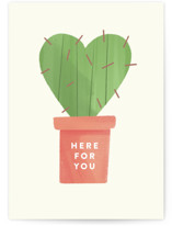 This is a green get well soon card by The Carillos called Prickly with standard printing on signature in greeting cards.